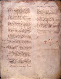 AlexandrinusFol65v.jpg